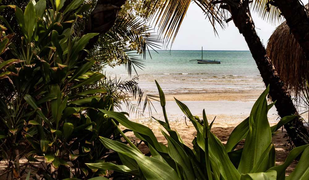 Nurkowanie Mozambik cover