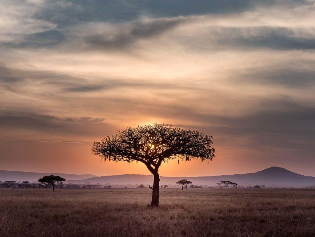 Tanzania/Zanzibar